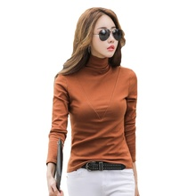 Blusa T Shirt Women Turtleneck Long Sleeved Womens T-shirt Harajuku Plus Velvet Padded Female Shirts Top Size