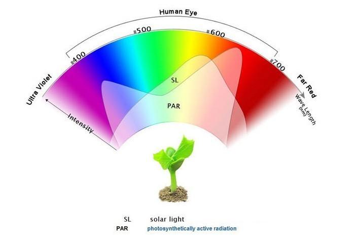 lighting 460nm greenhouse 900mmT8 17