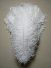 "50 pc איכות לבן יען נוצות, 16 18 inches/40 45 ס""מ, DIY קישוטי חתונה"