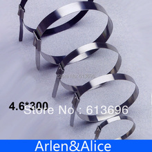 100pcs 4.6mmx300mm STAINLESS STEEL ZIP CABLE TIES LOCK TIE