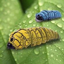 Новое поступление инфракрасных насекомых с дистанционным управлением