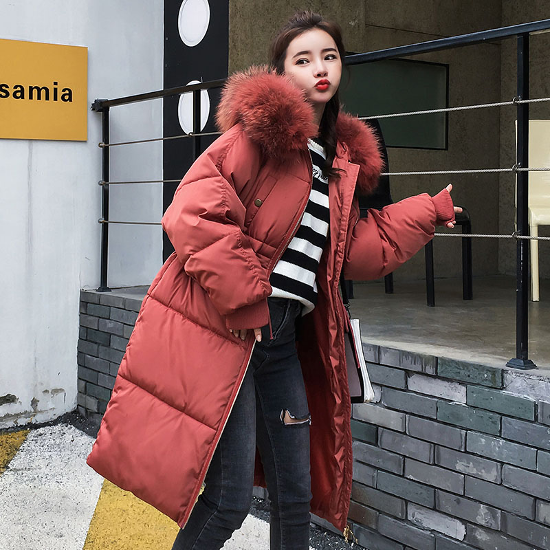 2019 New Winter Jacket Female Parkas Coat Female Long Down Jacket Plus Size Long Hooded Duck Down Women