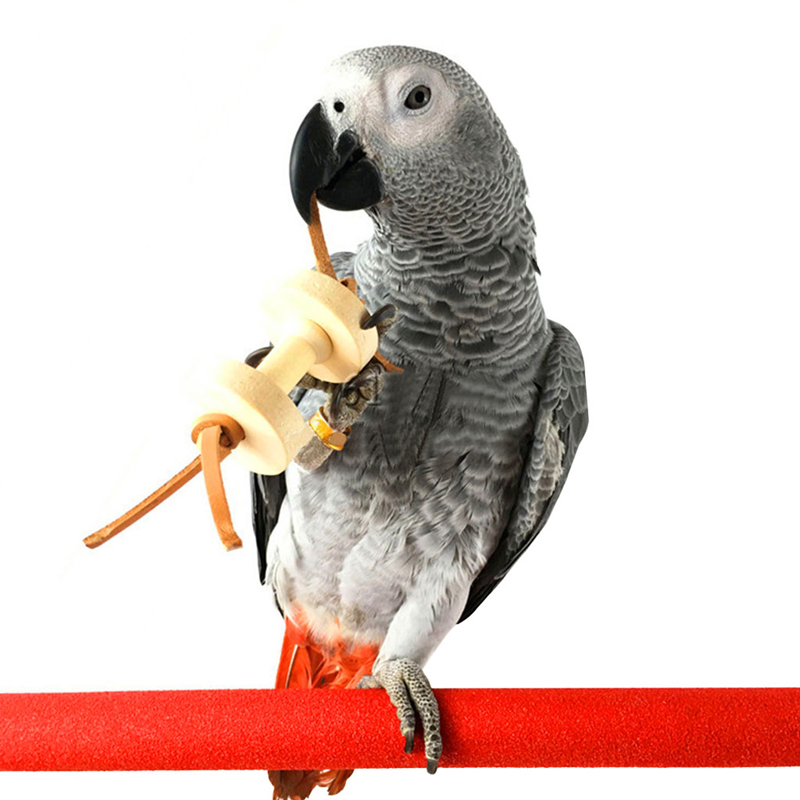 Parakeet Chew Toys : Parrot pet bird dumbbells chew toys wood for parakeet