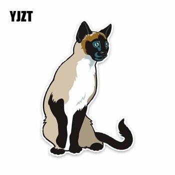Thai velká kočička