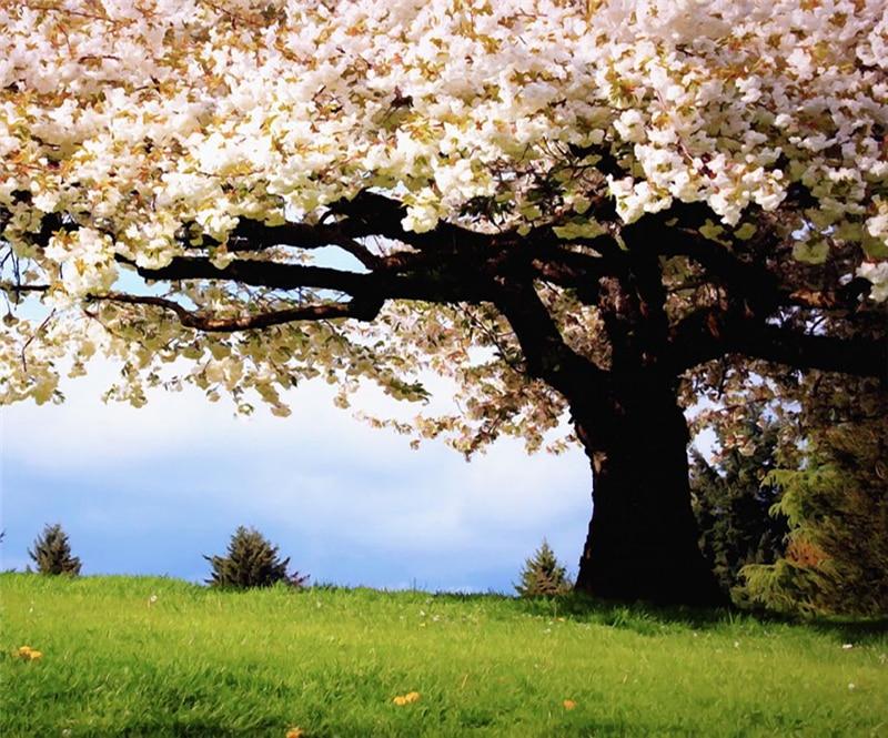 15%, высокое качество натуральный растительный ротанг тележка корзина для покупок прочная тележка с алюминиевым универсальным колесом - 2
