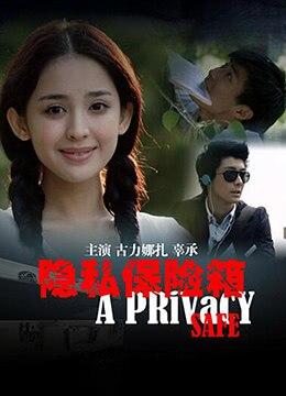 《隐私保险箱》2013年中国大陆悬疑电影在线观看