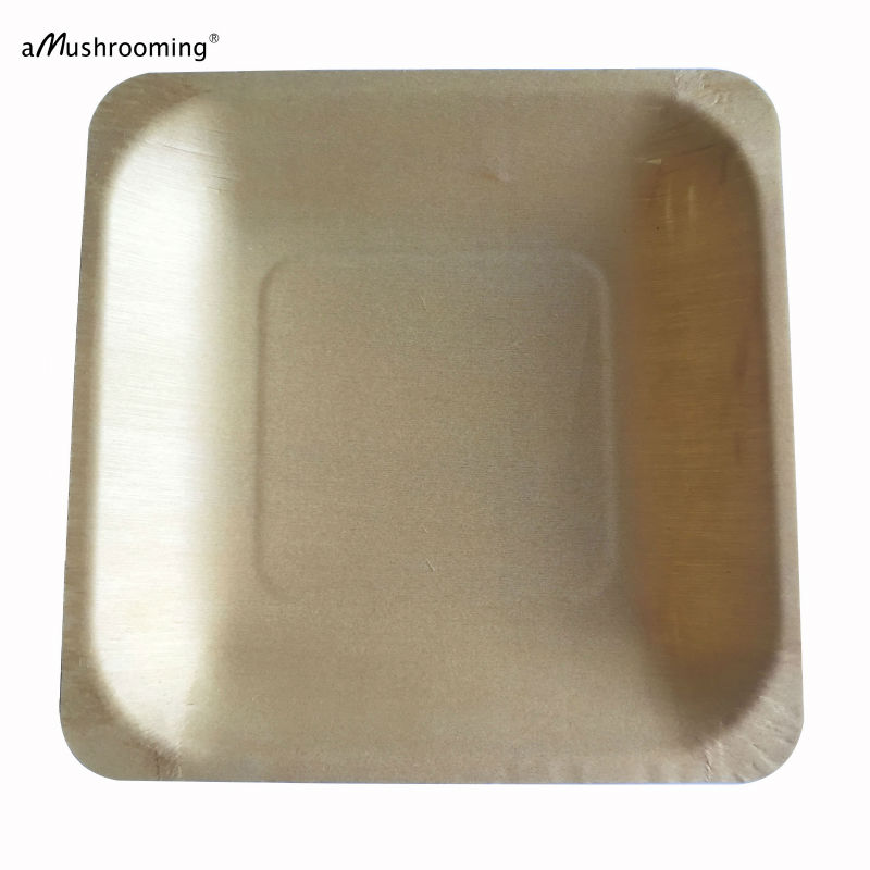 14cm biodegradable compostable Disposable Wood Plate 100 Square Plates Wedding Party Plate Baby Shower Buffet restaurant  sc 1 st  AliExpress.com & 25 pieces/lot) Biodegradable Square Disposable Wooden Plate 14cm ...