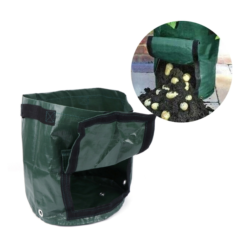 Vegetable grow bags in bangalore dating 3