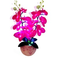 Two In One Function Flower And Lamp With Bombilla Led The Newest Desk Lamp Luces Led