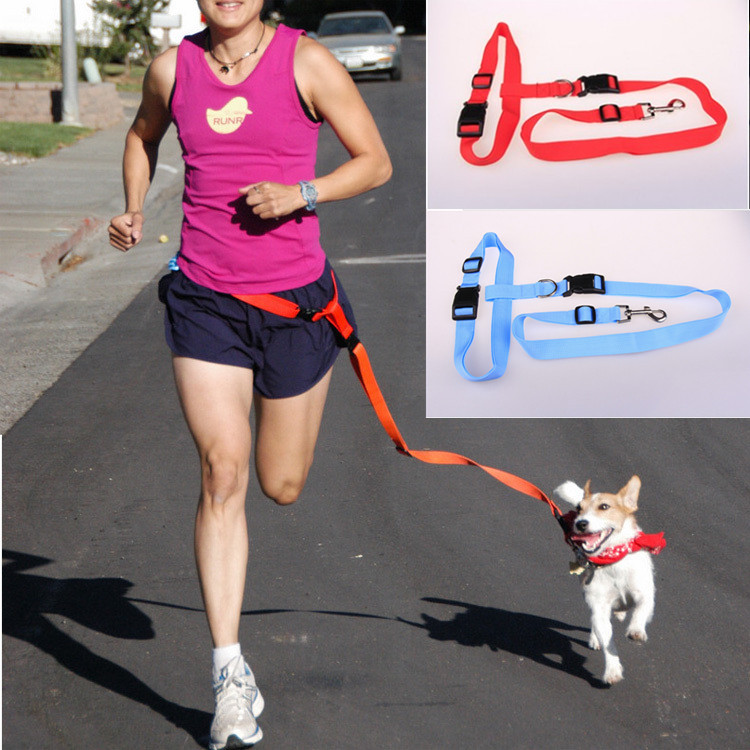 Bajila Pet supplies wholesale special traction running belt traction dog running in the morning special traction rope