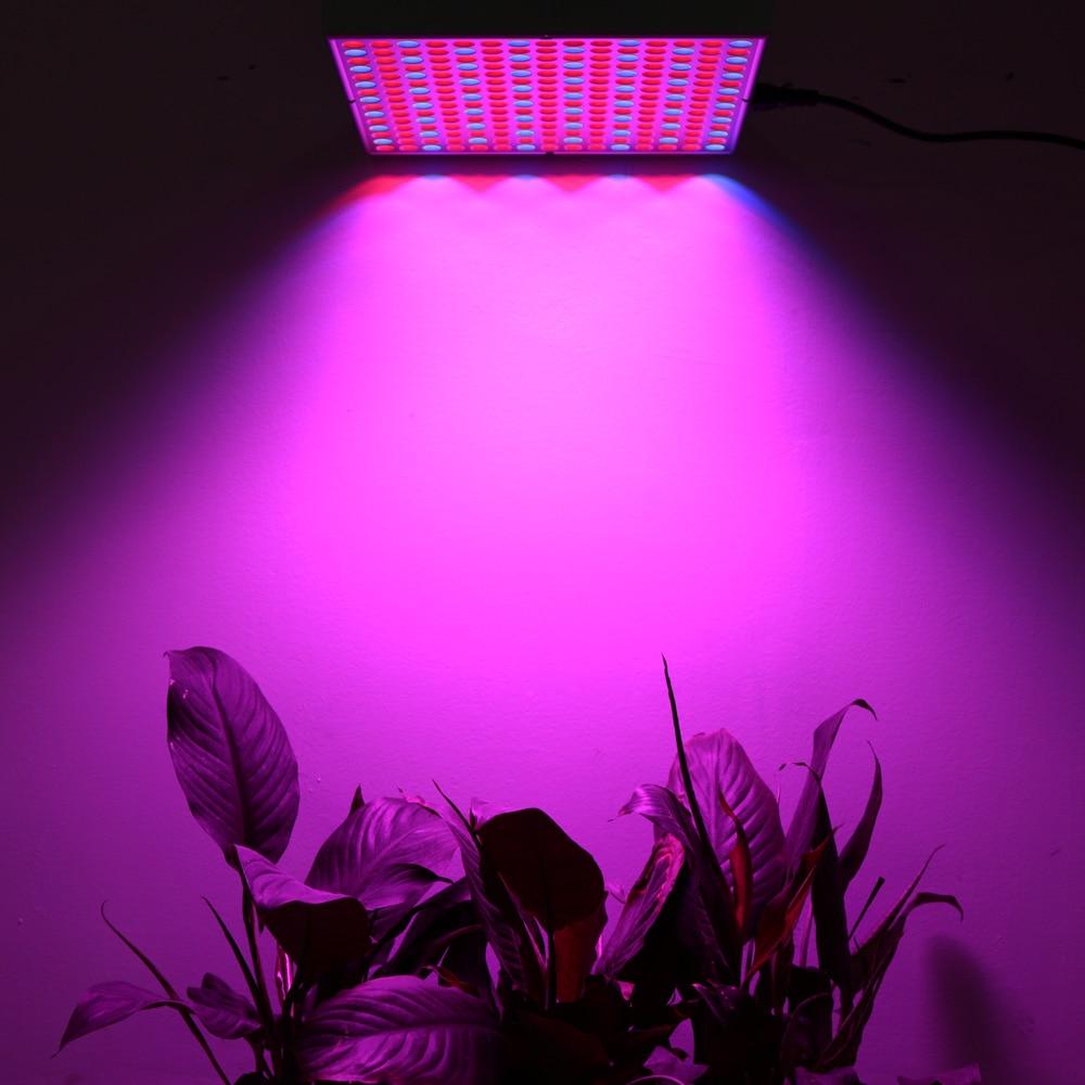 Levou Crescer Luzes hidrelétrica Características : Full Spectrum