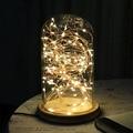 Luzes Da Corda LED Fio de Cobre Luzes Cordas-Interior Sombra De Vidro para o natal festival festa de casamento Decoração de Casa 100-240 V