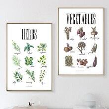 Скандинавские минималистичные травы овощи искусство рисунки на холсте постеры на стену, картины для гостиной современный домашний декор SID357