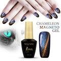 Azul Beleza 12 ml Mais Novo 12 Cor Das Unhas de Gel Gel Camaleão Gel Verniz magnético Novo Estilo de alta Qualidade UV Unhas de Gel polonês
