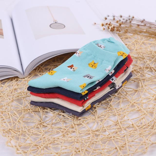 5 Pairs Colourful Cute Cat Print Ladies Socks