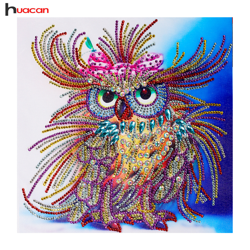 Huacan Special Shaped Diamond Painting Owl Handicraft Needlework 3d Drill Mosaic DIY Diamond Embroidery Animal 24x24cm