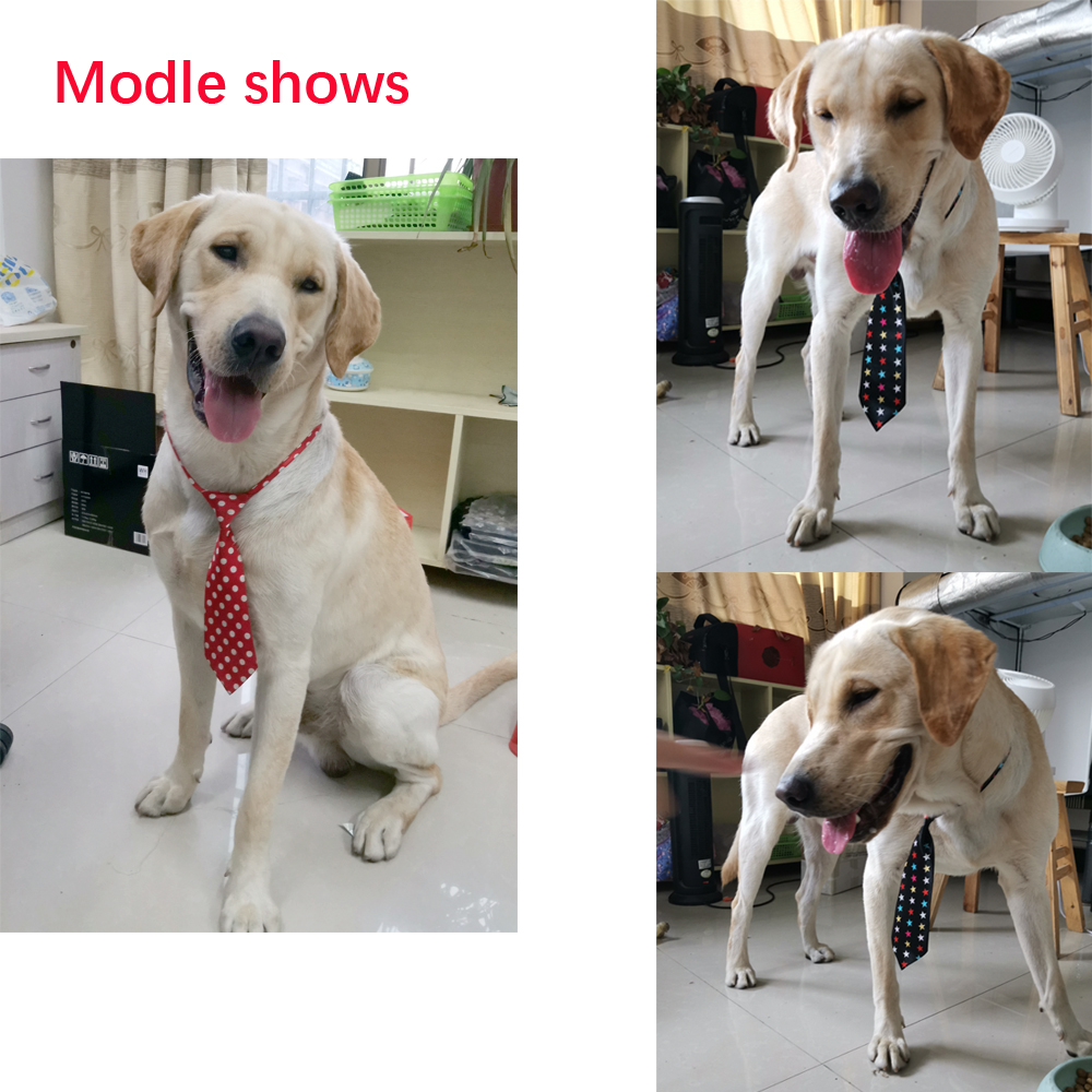 Image 3 - New 100pcs Dog Accessories Middle Large Dog Pet Supplies Large 