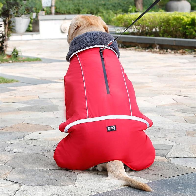 Dog Clothes (26)