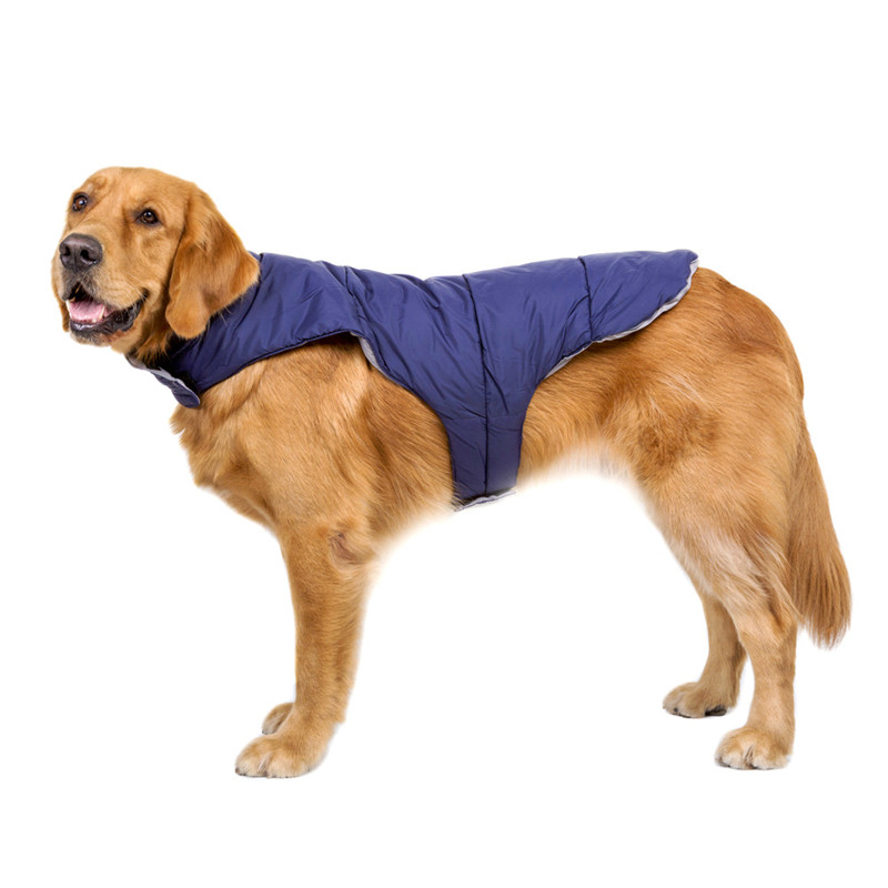 Dog Clothes for Large Dogs (18)