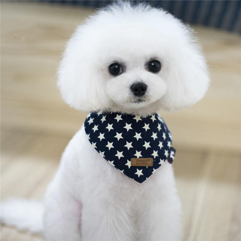 Pet Products Cat Dog Supplies Aksesuāri Zvaigznes Drukāt - Mājdzīvnieku produkti - Foto 3