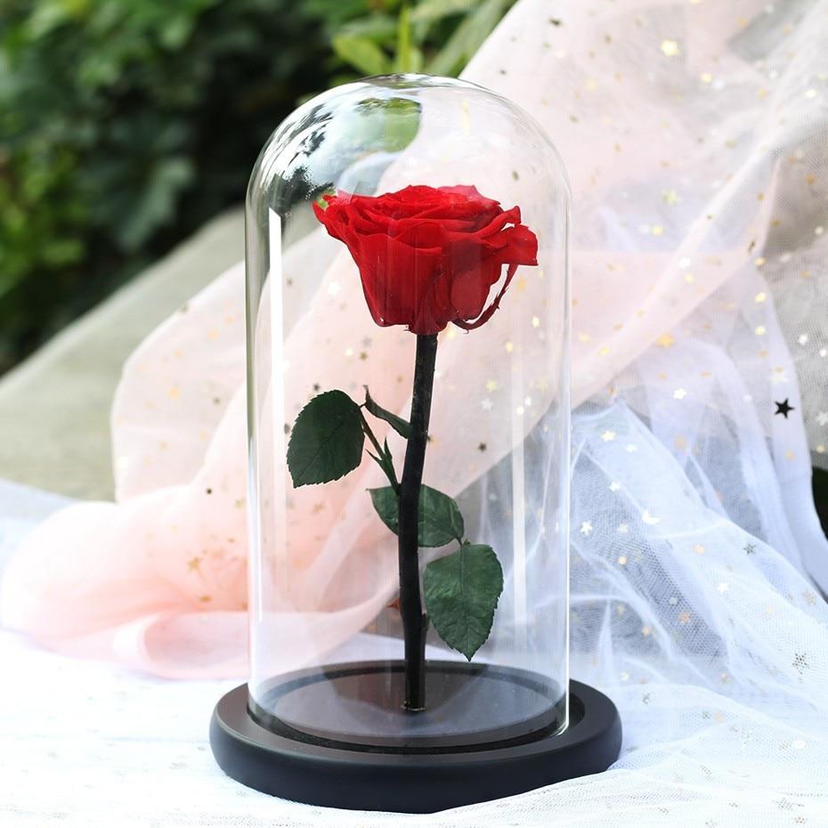 Красавица и Чудовище красная роза в колбе стеклянный купол на деревянной основе для подарка на Рождество украшение стола для дома вечные цветы - Цвет: Красный