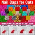 120 pcs-caps unhas macias para gatos + adhesive cola + 6x 6x aplicador/* xs, s, M, L, pata, garra, tampa, muito, cat */