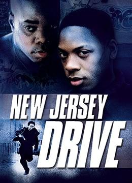 《暴风汉子》1995年美国犯罪,剧情电影在线观看