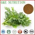 1000g Doce Wormwood Herb/Artemisia apiáceas/Artemisia annua/Southernwood Extrair com frete grátis