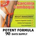 3 Garrafas, 75% HCA garcinia cambogia extrato puro produto de emagrecimento RÁPIDO, emagrecimento dieta do chá 1 saco para dieta livre