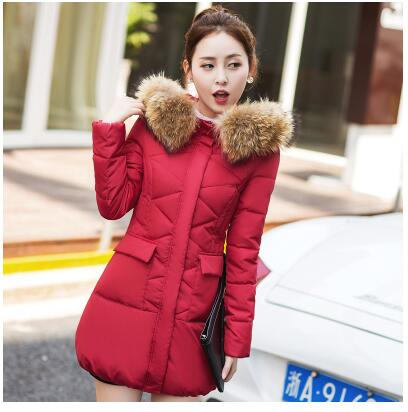Autumn and winter new women's high-end temperament elegant cotton women in the long section of the big hair collar Slim plus thi purnima sareen sundeep kumar and rakesh singh molecular and pathological characterization of slow rusting in wheat