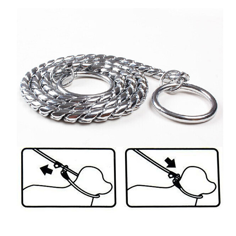 dog collar high quality pet snake chain pet products match p chain competition dedicated dog