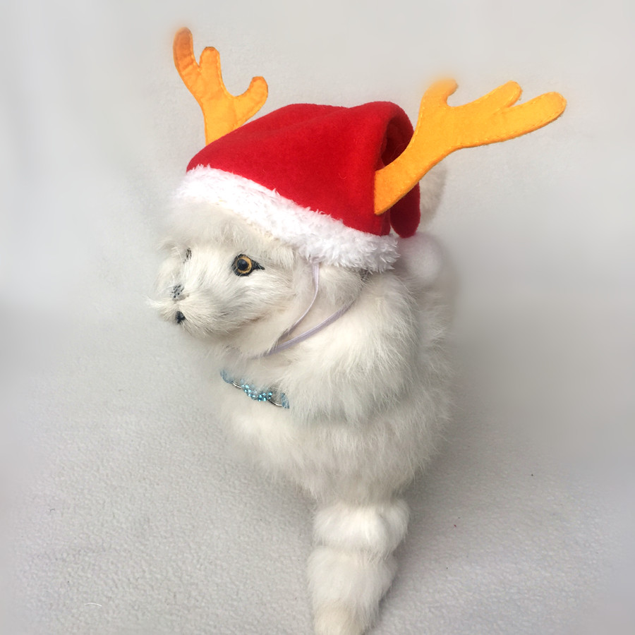 Christmas Hats For Dogs.Us 2 69 Dog Hat For Pet Cats Christmas Apparel Dog Antlers Hat Cap Puppy Chihuahua Cat Winter Warm Hat With Snow Ball In Cat Clothing From Home