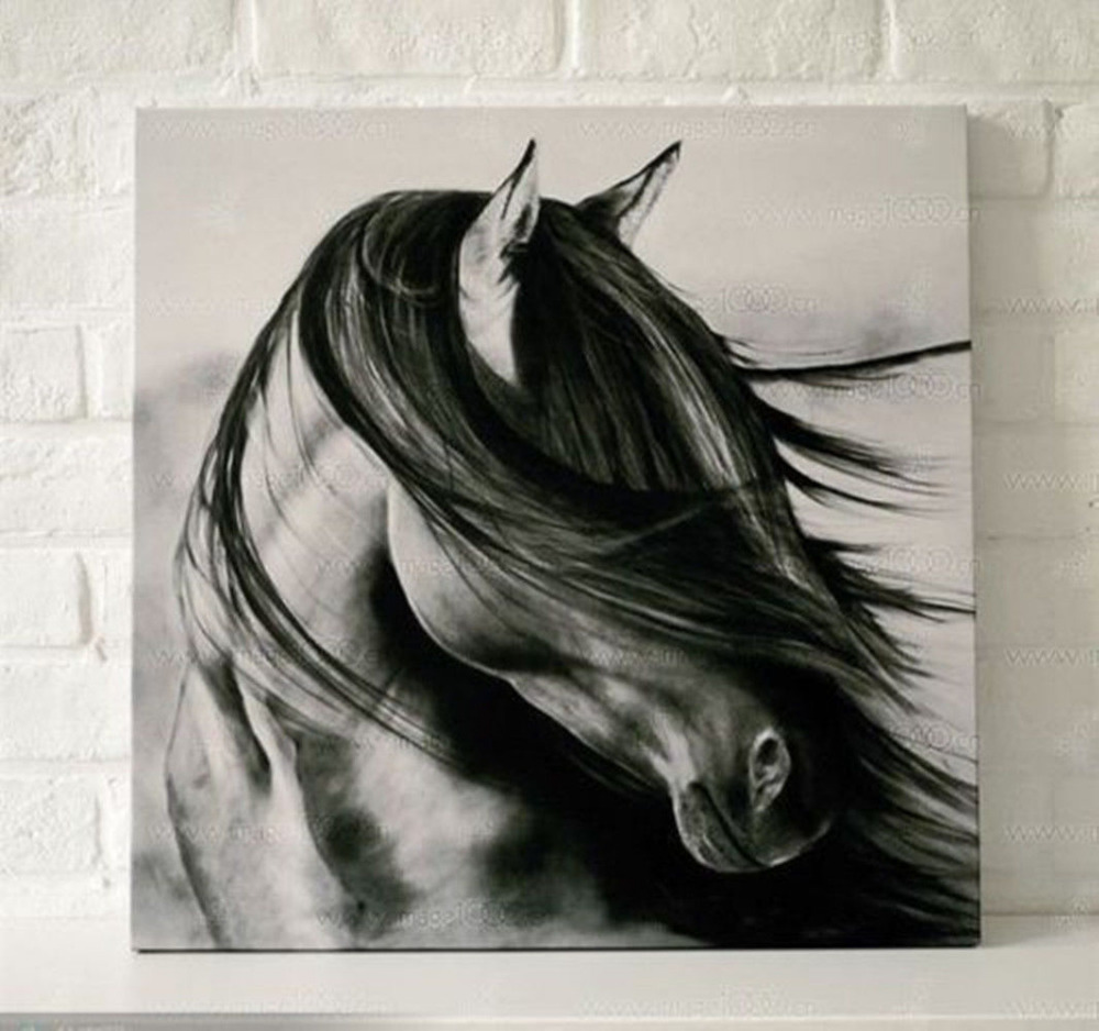 Abstract Hand Painted Oil Painting Canvas Wall Decor Black White Horse No Frame In Calligraphy From Home Garden On Aliexpress