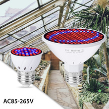 GU10 Led 220V Grow Light E27 Full Spectrum Indoor Plant E14 Fitolamp 15W 20W MR16 Phyto Lamp Seeds B22 Tent