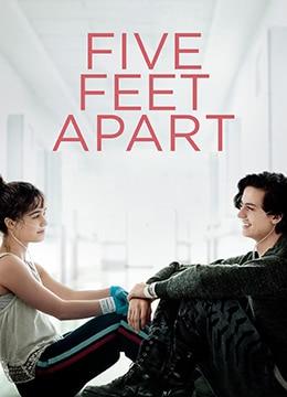 《五尺天涯》2019年美国剧情,爱情电影在线观看