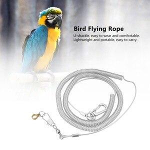 4,5/6,5/8,5 мм Диаметр ножного кольца + 6 м длина попугай птица анти-укус Летающий веревка наборы поводков случайный цвет