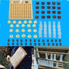Abeja Apicultura Herramienta Celular 100 Tazas Set Sistema de Cría Reina Abeja Nicot Cupkit Completa Catcher Apicultura Jaula Ayudante
