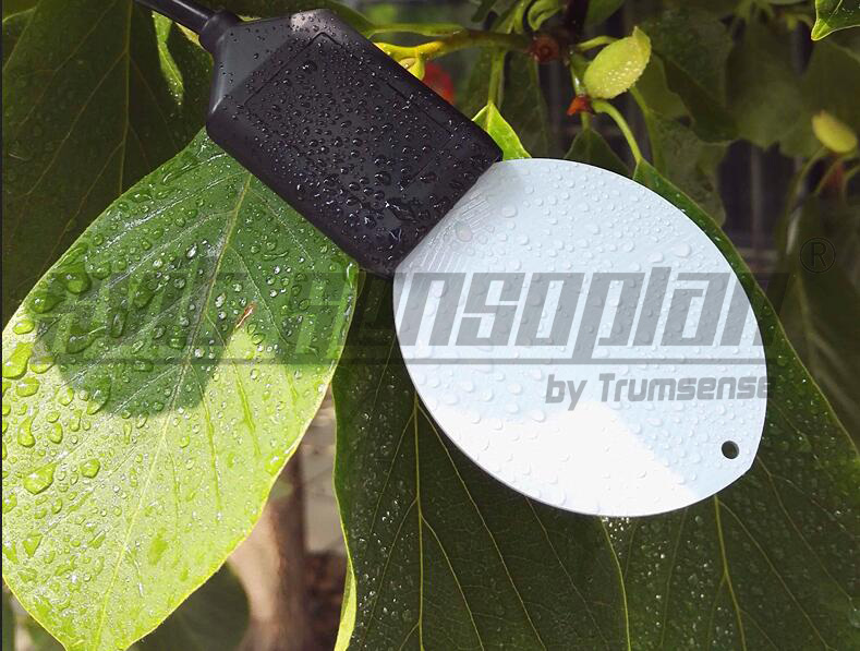 4-20MA Leaf Surface Humidity Sensor/Leaf Surface Moisture Sensor/ Leaves Folium Recording Monitoring Meter high quality folium eriobotryae extract loquat leaf p e