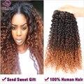 6A Brasileño de la Virgen Del Pelo de La Belleza Afro Curl Extensiones de Pelo Ombre 3 Unids Tres Tonos 1B/4/30 Ombre Enrollamiento flojo Brasileño Del Cabello TOAC20