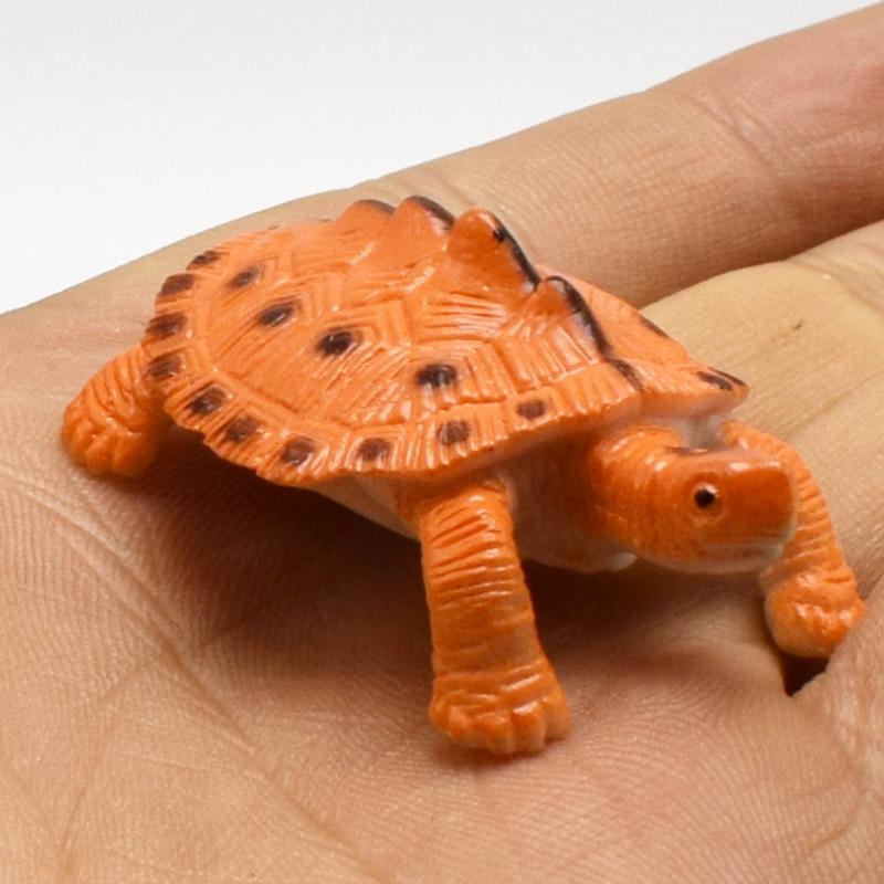 8 pcs/lot réaliste Simulation animaux tortues modèle figurine jouet pour enfants jouets éducatifs
