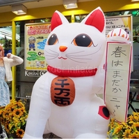 Custom promotion white giant inflatable lucky cat, inflatable fortune cat for advertising