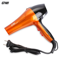 Guowei GW 695 Electric Professional Hair Dryer Portable Traveller Compact Powerful Hairdryer Blow Dryer 1600W Ceramic