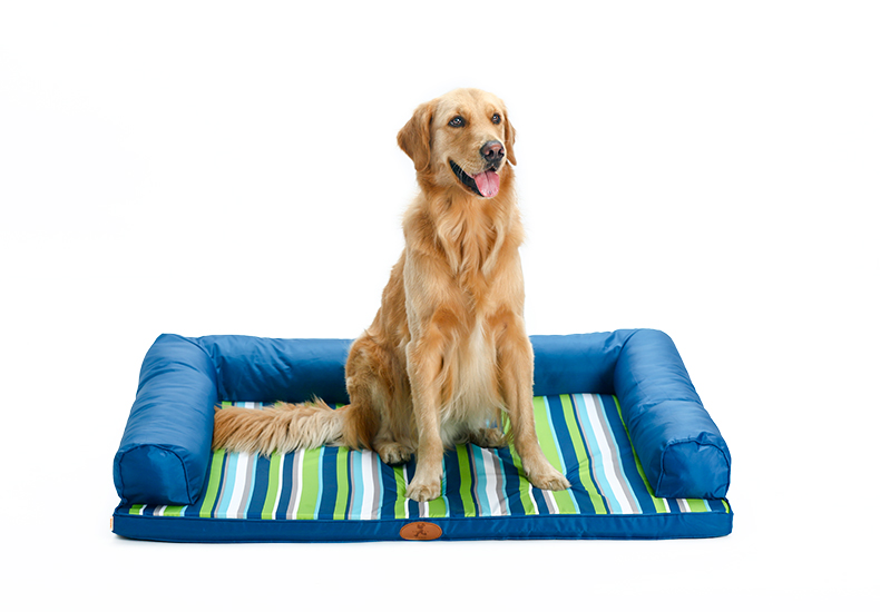 Dog Beds for Large Dogs Headrest Top Orthopedic