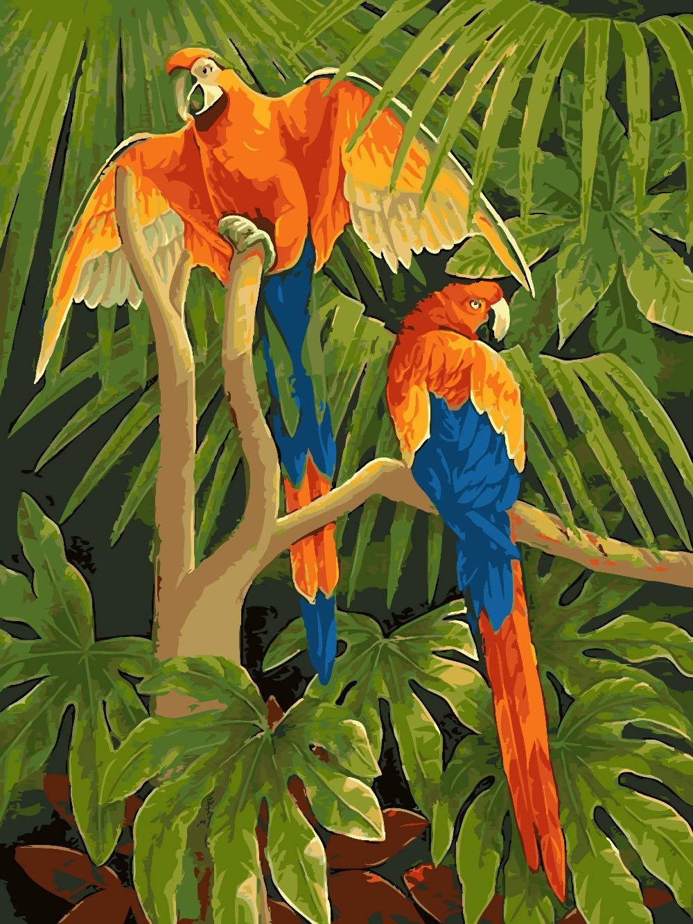 HQ aves loro cuadros pintura por número amor pájaro DIY pintura por ...