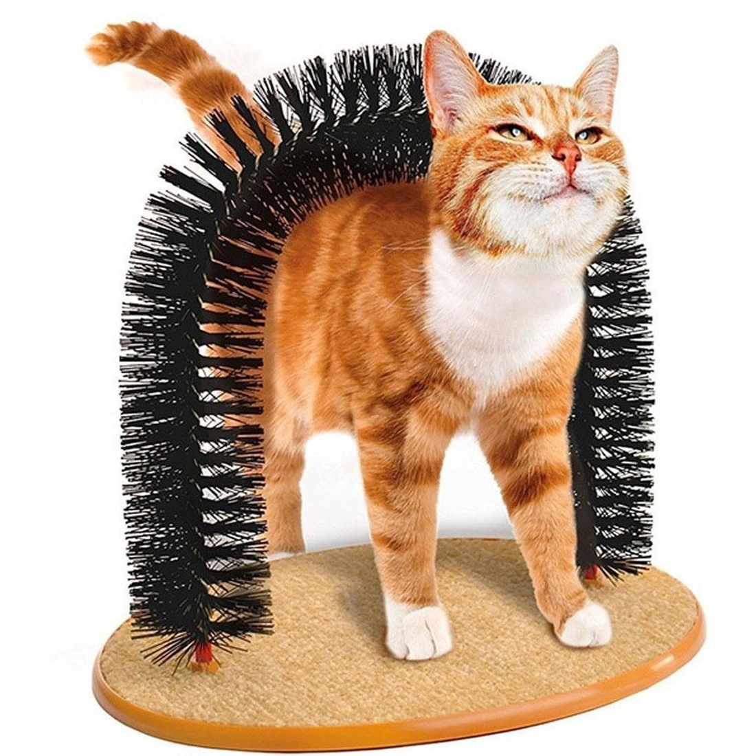 Pet Products Arch Cat Self Groomer With Round Fleece Base dog Toy Brush scratcher For Pets Scratching Devices in Furniture Scratchers from Home Garden