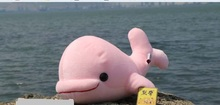 small cute plush dolphin toy stuffed pink big head whale doll birthday gift about 23cm
