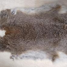 Незначительные дефекты, натуральный кроличий мех, сырье, аксессуары для одежды,, кроличий мех из натуральной кожи, специальная распродажа