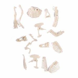 Image 4 - 3D Glow In Dark Dinosaur Excavation Kit Science Digging DIY TOY For Boy Action Figure Kids Educational STEM Toys Type Random
