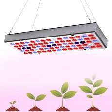lâmpada para estufa indoor crescer tenda legumes crescimento & floração