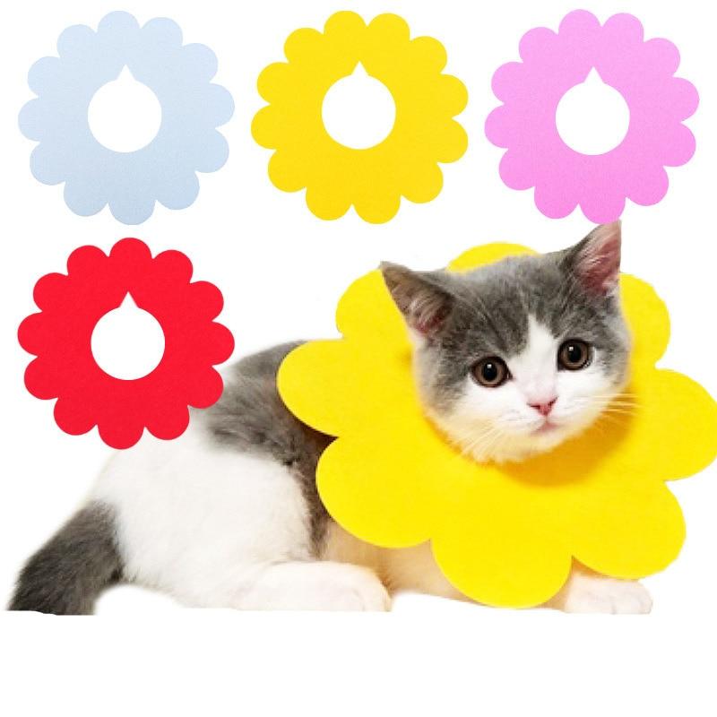 5pcs New Cat Elizabeth Ring Pet Anti bite Anti smashing Sun Flower Saliva Towel Felt Cloth Cat Collar Puppy Collar Pet Supplies in Collars from Home Garden